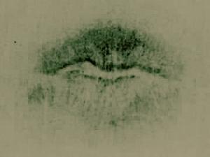 lip-print2